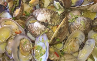 Vongole schells in white wine